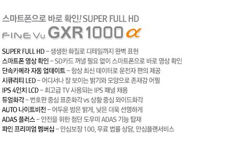 GXR1000 α 설명
